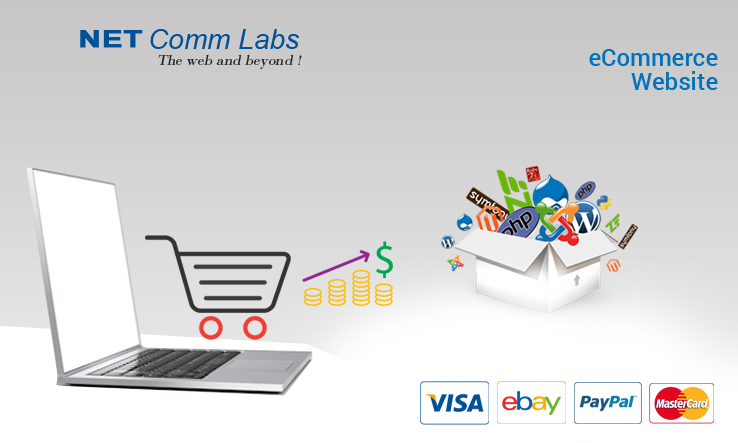 E commerce web design company in Delhi